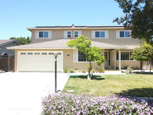 445 Payne Ave, San Jose, CA 95128 (#ML81710458) :: The Goss Real Estate Group, Keller Williams Bay Area Estates