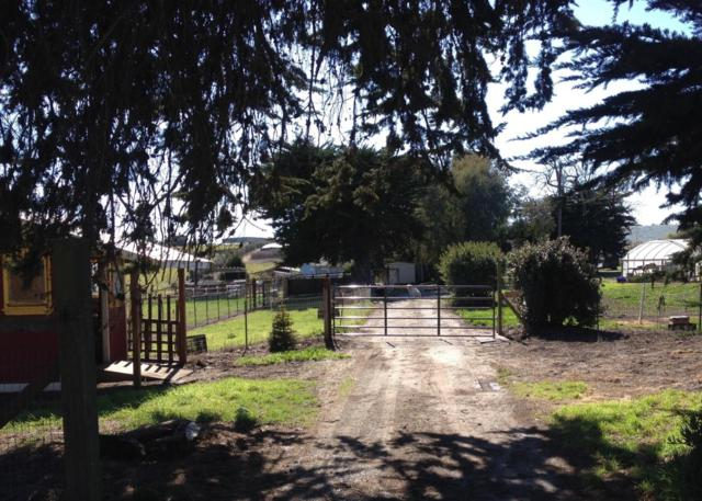 327 San Andreas Rd, Watsonville, CA 95076 (#ML81710470) :: von Kaenel Real Estate Group