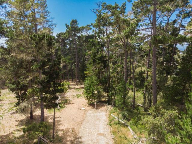 1125 Spyglass Woods Dr, Pebble Beach, CA 93953 (#ML81710486) :: Perisson Real Estate, Inc.