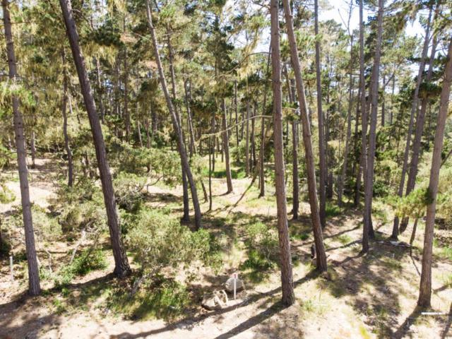 1070 Spyglass Woods Dr, Pebble Beach, CA 93953 (#ML81710491) :: Perisson Real Estate, Inc.