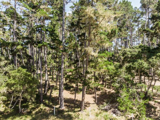 1062 Spyglass Woods Dr, Pebble Beach, CA 93953 (#ML81710494) :: Perisson Real Estate, Inc.