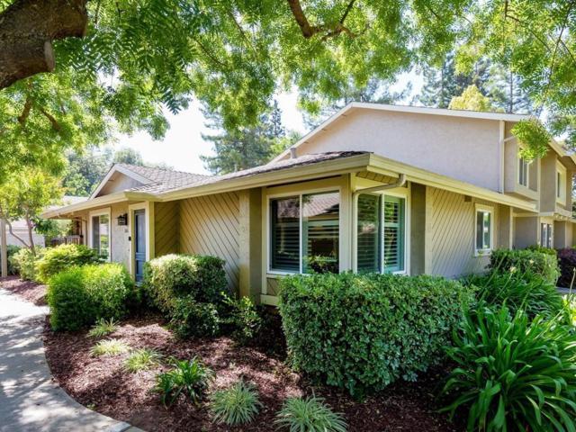 1146 Arbor Vista Way, San Jose, CA 95126 (#ML81710663) :: The Goss Real Estate Group, Keller Williams Bay Area Estates