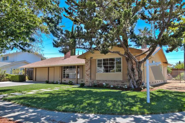 5003 Joseph Ln, San Jose, CA 95118 (#ML81710871) :: Intero Real Estate