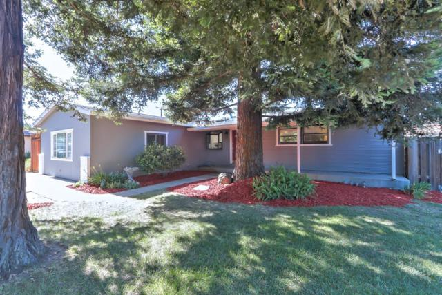 1127 Boise Dr, Campbell, CA 95008 (#ML81710938) :: The Gilmartin Group