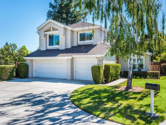 11608 Birch Spring Ct, Cupertino, CA 95014 (#ML81711042) :: Strock Real Estate