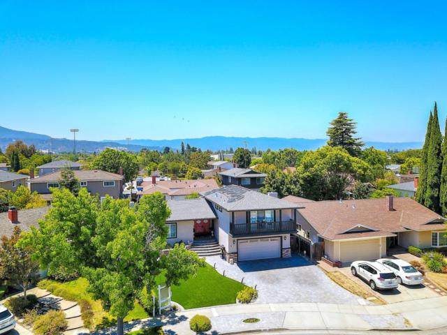 1482 Luning Dr, San Jose, CA 95118 (#ML81711284) :: The Kulda Real Estate Group