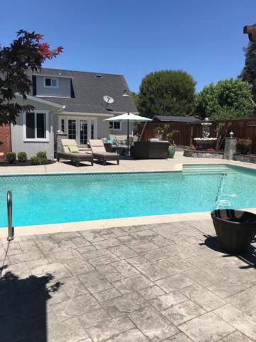 6034 Radcliffe Ave, Newark, CA 94560 (#ML81711393) :: Julie Davis Sells Homes