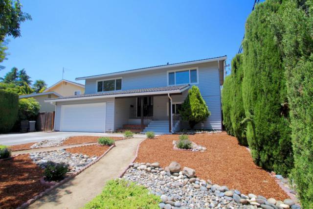 1451 Maria Way, San Jose, CA 95117 (#ML81711410) :: Julie Davis Sells Homes