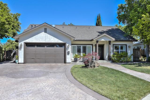 546 Marge Way, San Jose, CA 95117 (#ML81711449) :: Julie Davis Sells Homes
