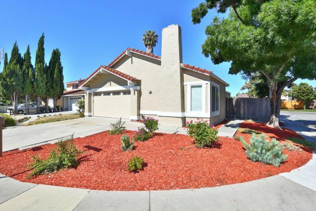 3915 Jerabek Ct, San Jose, CA 95136 (#ML81711464) :: The Kulda Real Estate Group