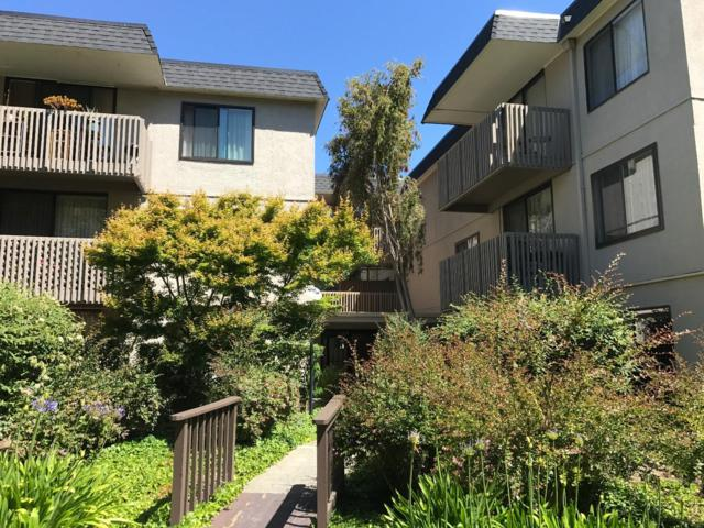 7147 Shelter Creek Ln, San Bruno, CA 94066 (#ML81711583) :: Julie Davis Sells Homes