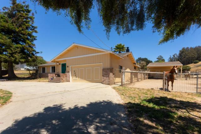 2051 Elkhorn Rd, Castroville, CA 95012 (#ML81711591) :: RE/MAX Real Estate Services