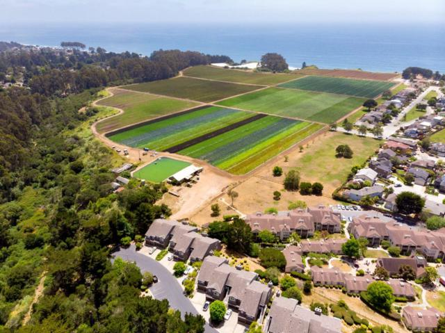 148 Seascape Ridge Dr, Aptos, CA 95003 (#ML81712575) :: Strock Real Estate