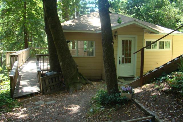 33 Woodwardia Ave, Felton, CA 95018 (#ML81712586) :: Perisson Real Estate, Inc.