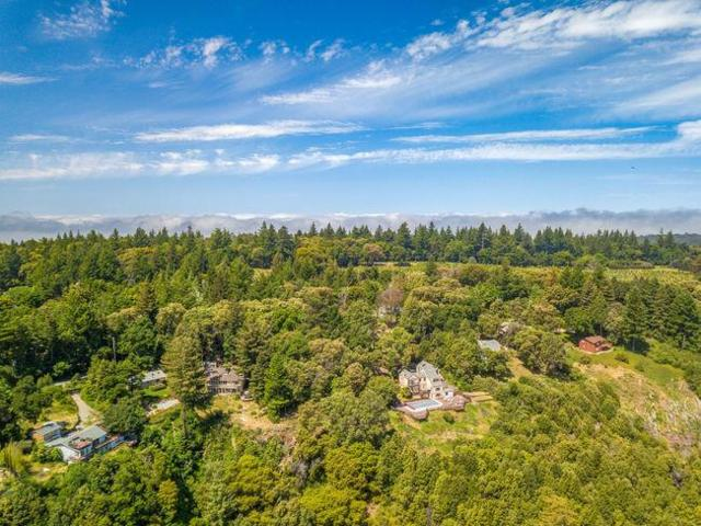 220 Braemoor Dr, Santa Cruz, CA 95061 (#ML81712933) :: Strock Real Estate