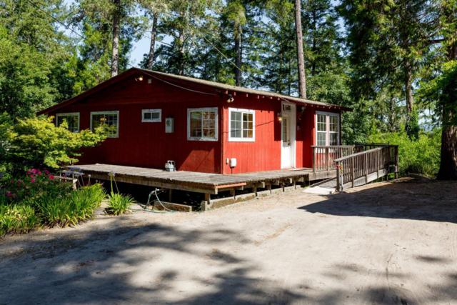 6 Pine Ln, Mount Hermon, CA 95041 (#ML81713168) :: The Goss Real Estate Group, Keller Williams Bay Area Estates
