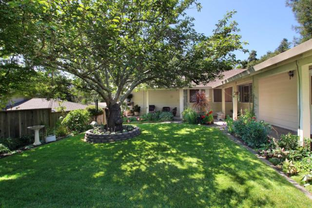 261 Capelli Dr, Felton, CA 95018 (#ML81713500) :: Perisson Real Estate, Inc.