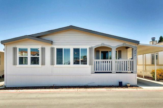 1085 Tasman Dr 293, Sunnyvale, CA 94089 (#ML81714381) :: von Kaenel Real Estate Group