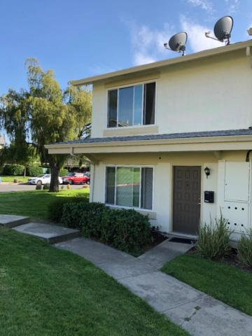 Schweppes Ct, San Jose, CA 95132 (#ML81714416) :: The Kulda Real Estate Group