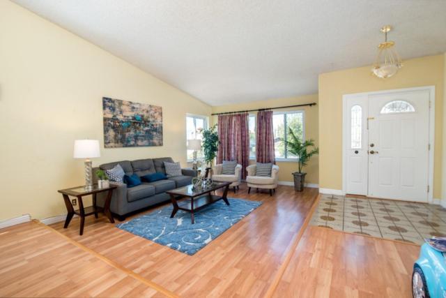 4986 Fontanelle Pl, San Jose, CA 95111 (#ML81714570) :: The Kulda Real Estate Group