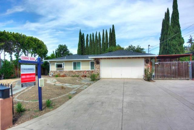 3735 Marchant Dr, San Jose, CA 95127 (#ML81714572) :: The Warfel Gardin Group