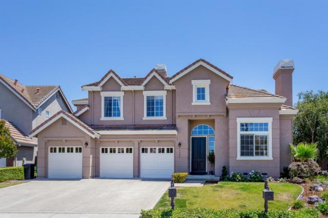 7245 Emami Dr, San Jose, CA 95120 (#ML81714731) :: The Warfel Gardin Group
