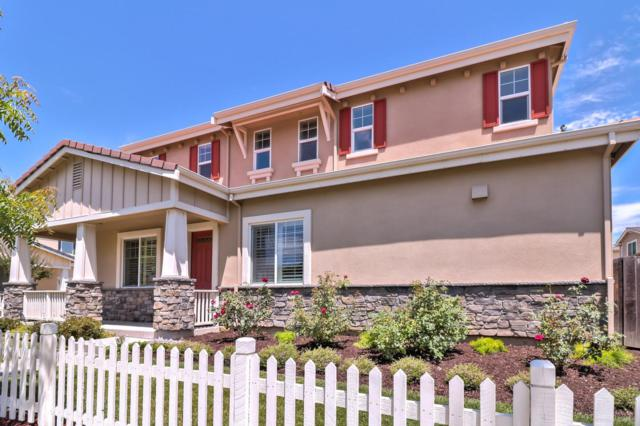 207 Rachel Ct, Campbell, CA 95008 (#ML81714741) :: von Kaenel Real Estate Group