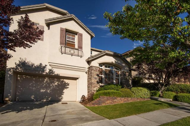 3055 Canoas Creek Ct, San Jose, CA 95136 (#ML81714845) :: The Warfel Gardin Group