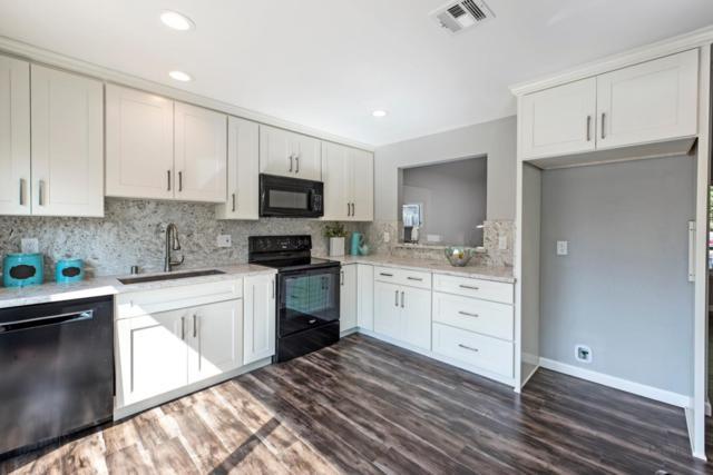 244 Moselle Ct, San Jose, CA 95119 (#ML81714851) :: The Kulda Real Estate Group
