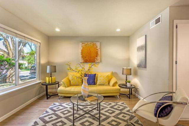 2170 Amberwood Ln, San Jose, CA 95132 (#ML81714928) :: Intero Real Estate