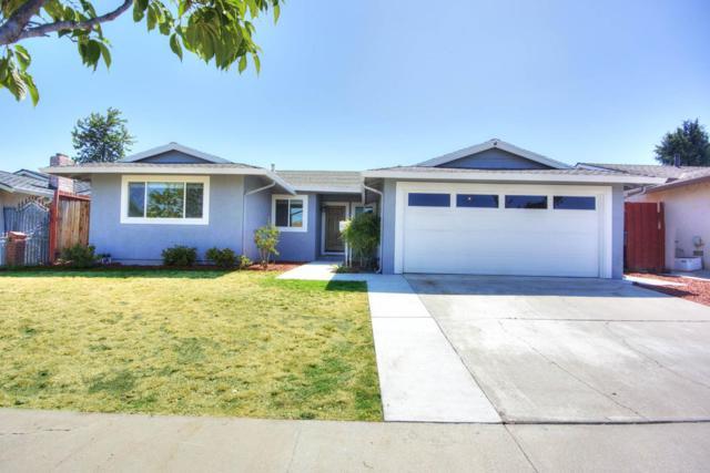 2960 Fenwick Way, San Jose, CA 95148 (#ML81714929) :: The Warfel Gardin Group