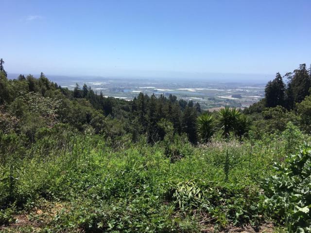 000 Bella Vista, Watsonville, CA 95076 (#ML81714979) :: The Kulda Real Estate Group