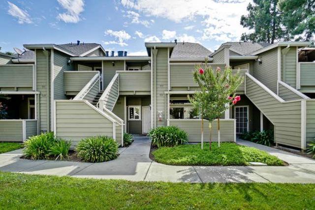 553 Shadow Dance Dr, San Jose, CA 95110 (#ML81714983) :: The Goss Real Estate Group, Keller Williams Bay Area Estates