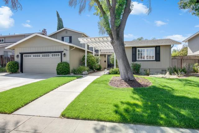 6641 Mount Wellington Dr, San Jose, CA 95120 (#ML81715159) :: The Warfel Gardin Group