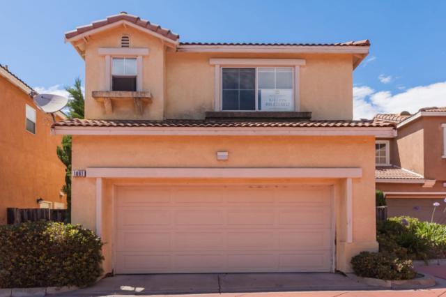 1061 Cantana Ter, Union City, CA 94587 (#ML81715232) :: Perisson Real Estate, Inc.