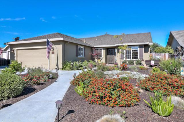 1420 El Cerro Dr, Hollister, CA 95023 (#ML81715282) :: Perisson Real Estate, Inc.
