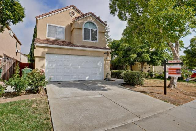 1289 Elkwood Dr, Milpitas, CA 95035 (#ML81715336) :: Perisson Real Estate, Inc.