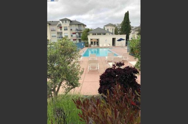 701 Baltic 705, Redwood Shores, CA 94065 (#ML81715377) :: Intero Real Estate