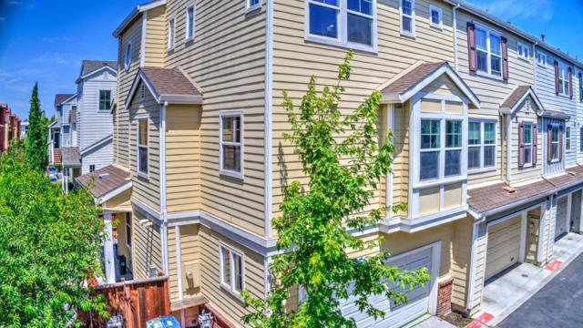 660 Pinnacles Ter, Sunnyvale, CA 94085 (#ML81715526) :: Intero Real Estate