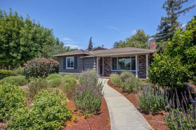 402 Terrace Dr, San Jose, CA 95112 (#ML81715599) :: Brett Jennings Real Estate Experts