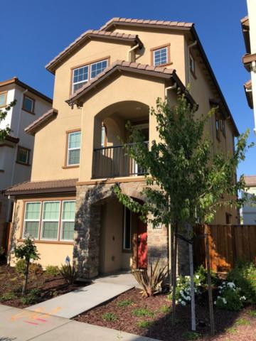 5062 Edenvale, San Jose, CA 95136 (#ML81715646) :: Intero Real Estate