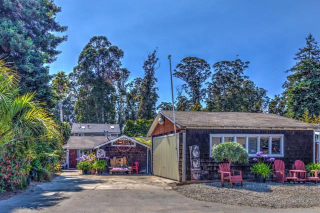 335 Anchorage Ave, Santa Cruz, CA 95062 (#ML81717507) :: Brett Jennings Real Estate Experts