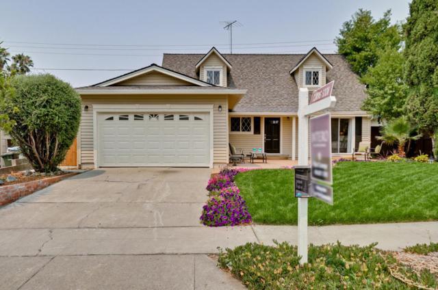 3215 Tulipwood Ln, San Jose, CA 95132 (#ML81718241) :: Intero Real Estate