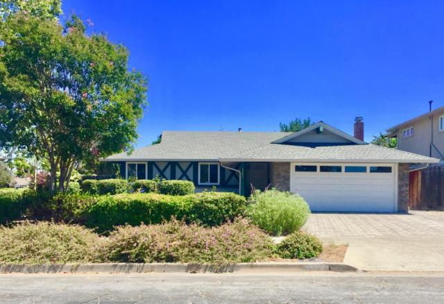 1562 Parkview Ave, San Jose, CA 95130 (#ML81718308) :: The Kulda Real Estate Group