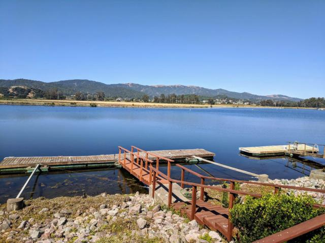 54 Dolphin ISLE, Novato, CA 94949 (#ML81718461) :: Strock Real Estate