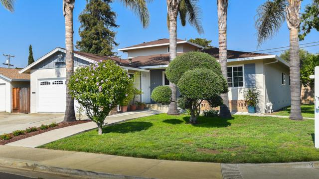 184 Smithwood St, Milpitas, CA 95035 (#ML81718522) :: The Goss Real Estate Group, Keller Williams Bay Area Estates