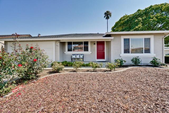 905 Cape Jessup Dr, San Jose, CA 95133 (#ML81718668) :: Brett Jennings Real Estate Experts