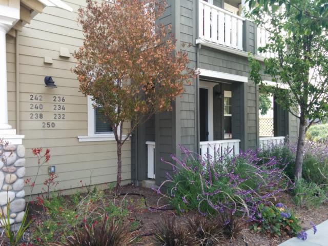 232 Cardiff Pl, Santa Cruz, CA 95060 (#ML81718719) :: Brett Jennings Real Estate Experts