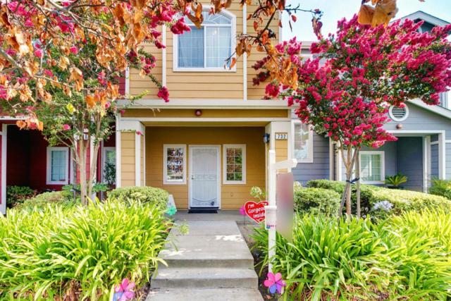 732 Bonita Ave, San Jose, CA 95116 (#ML81719120) :: Intero Real Estate