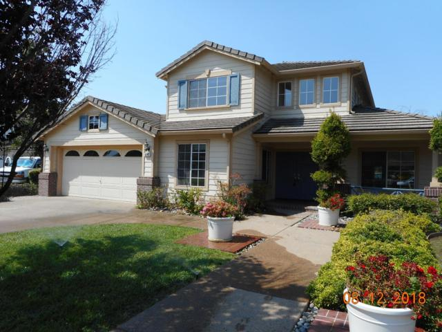 6247 Robin Ridge Ct, San Jose, CA 95135 (#ML81719164) :: The Kulda Real Estate Group